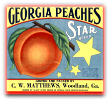 GeorgiaPeachs2